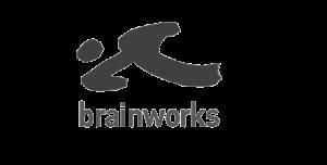 Brainworks Partner System Integrator